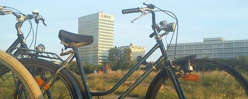 Mannheim Neckarufer
